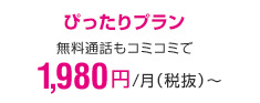 ぴったりプラン 2,980円
